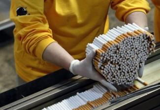 tobacco12