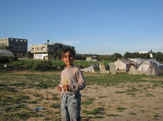 Gaza. Displaced persons.