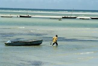 Oceans Dar es Salaam Tanzania - source UN M. Grant