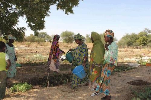 Sahel region Mali - source WFP Daouda Guirou