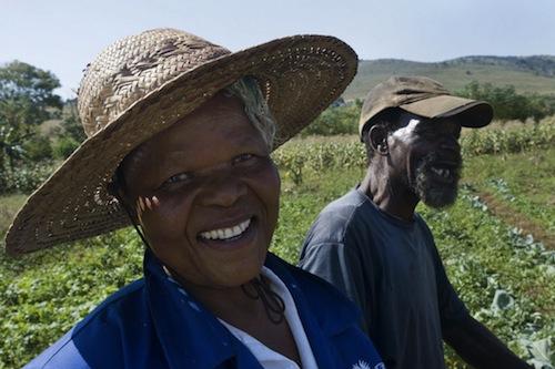 Swaziland  farmers  - source FAO