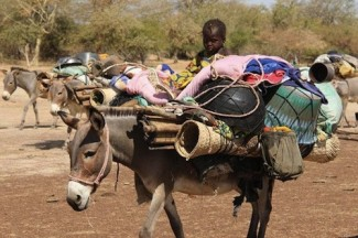 Mali drought - source WFP