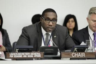 UN economic and social affair