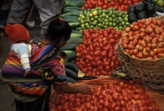 Food market - World Bank