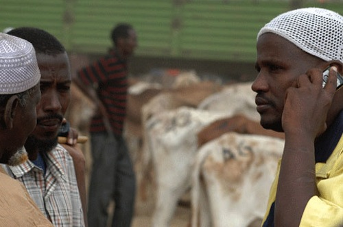 Kenya traders livestock - FAO