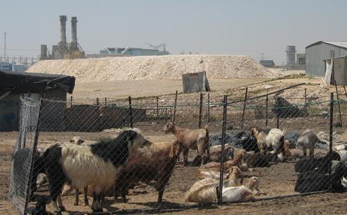israel-bedouin-wadi-naam 19.04.13