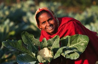 Woman in agriculture - World Bank