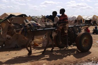 Ehiopia - Somali refugees - WFP