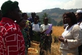 Rwanda Cousin with farmers - WFP
