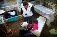MSF migrants